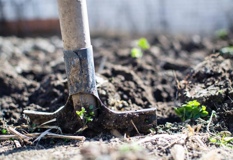 sprzedaż podłoży ogrodniczych - NATURA II Wojda Rafał zdjęcie 2