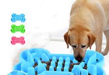 mata treningowa dla psa - OFiuFiuPL zdjęcie 20