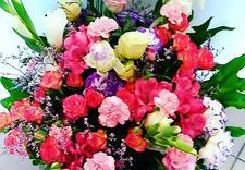 kwiaty doniczkowe - Kwiatuszek Elżbieta Piotr... zdjęcie 7