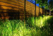 pielęgnacja ogrodów katowice - MUGO OGRODY KRZYSZTOF KRA... zdjęcie 5