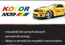 do zacisków - Kolor F.H. Krzysztof Podb... zdjęcie 2