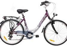rowery treningowe - Rower-Faktor Sp. J. Sklep... zdjęcie 1