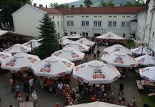 piwa importowane - Piwiarnia Żywiecka Sp. z ... zdjęcie 6