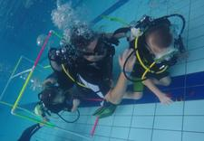 szkoła nurkowania - Delfinek Scuba zdjęcie 2