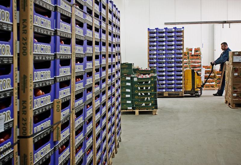 ceny warzyw - Targpiast Sp. z o.o. zdjęcie 3