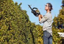 ogrodnictwo sprzęt - STAAF-SERWIS s.c. zdjęcie 2