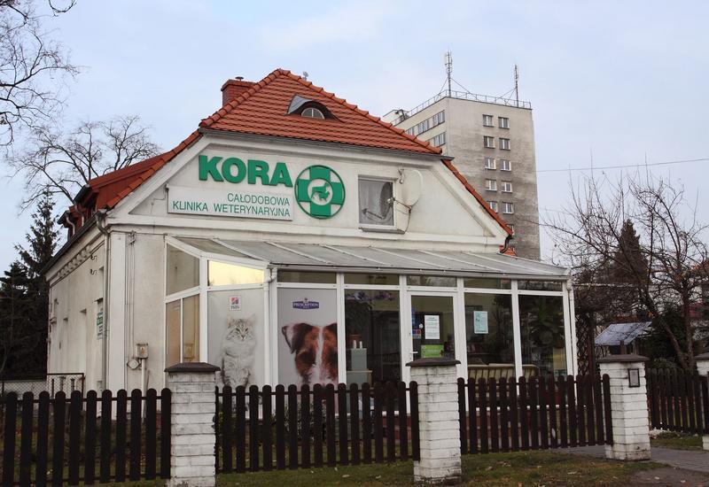usługi weterynaryjne - Klinika Weterynaryjna Kor... zdjęcie 2