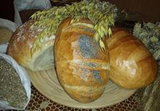 chleb - PIEKARNIA PIOTR ŁAKOMY zdjęcie 3