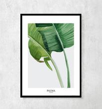 """Plakat botaniczny """"Palmy"""""""