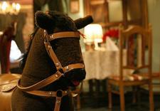 klimatyzowane sale - Hotel Ogonowski Restaurac... zdjęcie 5