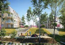 nowe - Tree Development Group Sp... zdjęcie 2