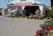 szlifierki - Centrum Ogrodnicze Aronia zdjęcie 13