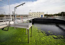 ciśnieniowe czyszczenie kanalizacji - Dąbrowskie Wodociągi Sp. ... zdjęcie 6