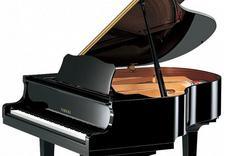 instrumenty dęte - Mx music - sklep muzyczny... zdjęcie 8