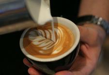 młynki do kawy - Espresso Service - Profes... zdjęcie 4