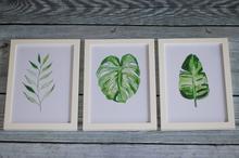 Plakaty Rośliny Tropikalne  zestaw 3 sztuk A5