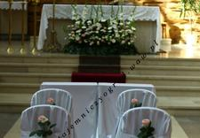 kwiaty na ślub - Pracownia Florystyczna Ta... zdjęcie 11