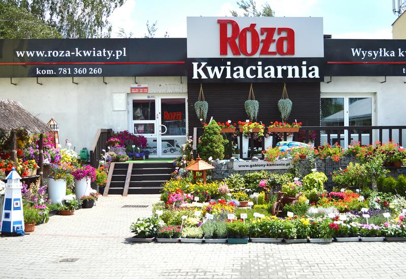 sprzedaż kwiatów - Kwiaciarnia Róża zdjęcie 4
