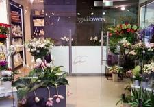 kompozycje kwiatowe - Aga Flowers Kwiaciarnie (... zdjęcie 3