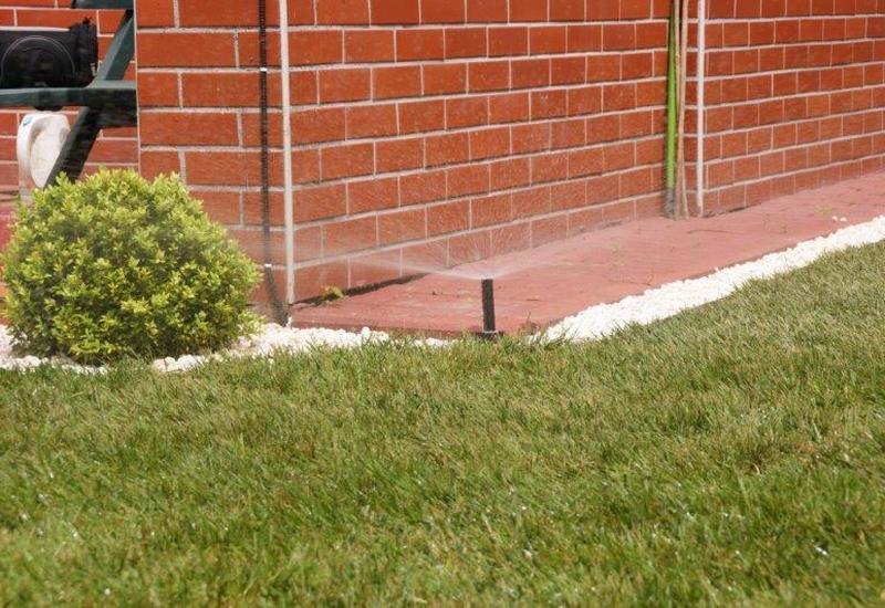 zakładanie trawników - Ogrody Barw zdjęcie 4