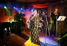 koncert - Klub Iguana Lounge zdjęcie 4