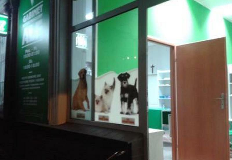 psów - CENTRUM ZDROWIA I URODY Z... zdjęcie 7
