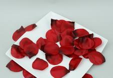 dekoracje ślubne - Faktor - Kwiaty i Rośliny... zdjęcie 1