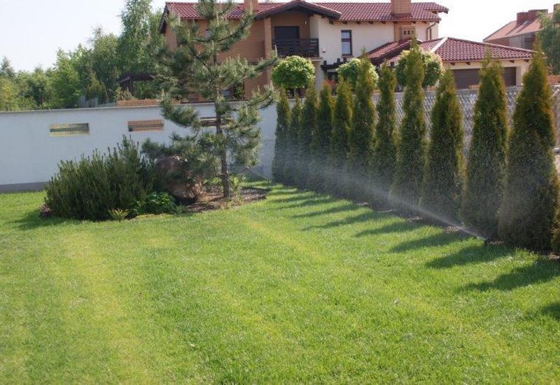 trawniki z rolki - Ogrody Barw zdjęcie 2