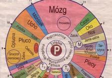 astrologia warszawa - Mandagaz. Centrum Medycyn... zdjęcie 8
