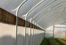 Tunele foliowe, szklarnie