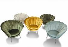 krzesła drewniane -  AGPOL  ANNA PUTZ zdjęcie 4