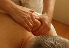 hirudoterapia - Masaż i medycyna naturaln... zdjęcie 2