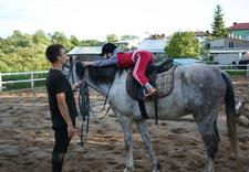 jeździectwo augustów - Ośrodek Jeździecki Ostoja... zdjęcie 6