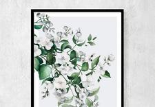 plakaty boho - Ceci Bloom Anna Pleń zdjęcie 4