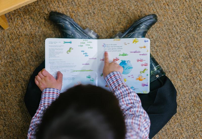 tarnów przedszkole - Przedszkole Niepubliczne ... zdjęcie 3
