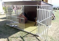 kojce dla psów - PPHU Konstal Kurnik Andrz... zdjęcie 29