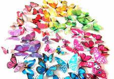motyle na ścianę 3D - FPHU Julcia Małgorzata Ku... zdjęcie 3