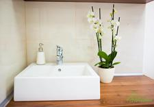 gabinet kosmetyczny orchidea - Gabinet Kosmetyczny Orchi... zdjęcie 6