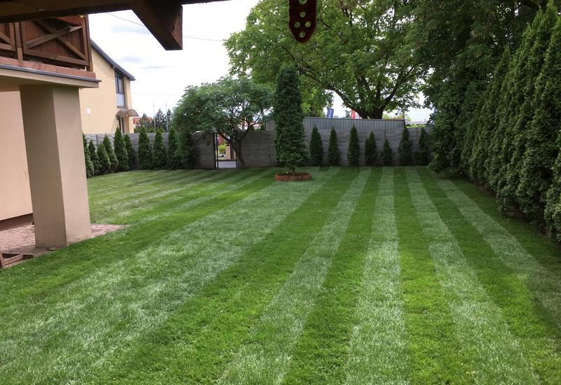 zakładanie trawników sianych - PLATAN URZĄDZANIE I UTRZY... zdjęcie 1