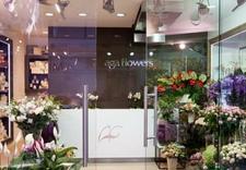 kwiaty sztuczne - Aga Flowers Kwiaciarnie (... zdjęcie 1