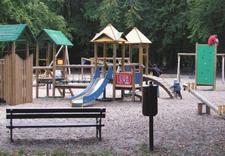 projekt ogrodu - Zakład Kształtowania i Pi... zdjęcie 21