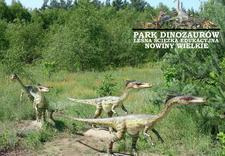 sala multimedialna - Park Dinozaurów. Leśna śc... zdjęcie 6
