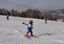szkoły narciarskie - Wyciąg narciarski Pasieki... zdjęcie 2