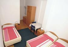 domy wczasowe - Meduza Dom Wczasowy zdjęcie 11