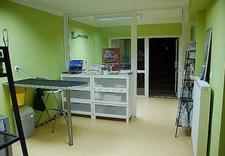 ekg dla zwierząt - Aport - Gabinet Weterynar... zdjęcie 1