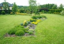 wizualizacje ogrodów - Ogrody. Barbara Wacławska zdjęcie 3