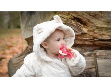 zabawki drewniane - EcoSmyk Patrycja Wajszczy... zdjęcie 4
