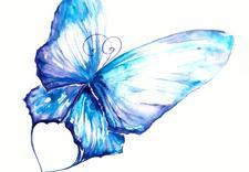 druk cyfrowy - Drukarnia Papillon. Druka... zdjęcie 4