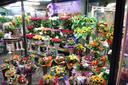 kosze kwiatowe - Fabryka Bukietów. Kwiacia... zdjęcie 3