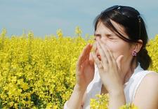 alergia - Instytut Cetena Sp. z o.o... zdjęcie 3